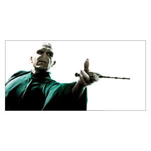 Неформатный постер Harry Potter. Размер: 120 х 60 см